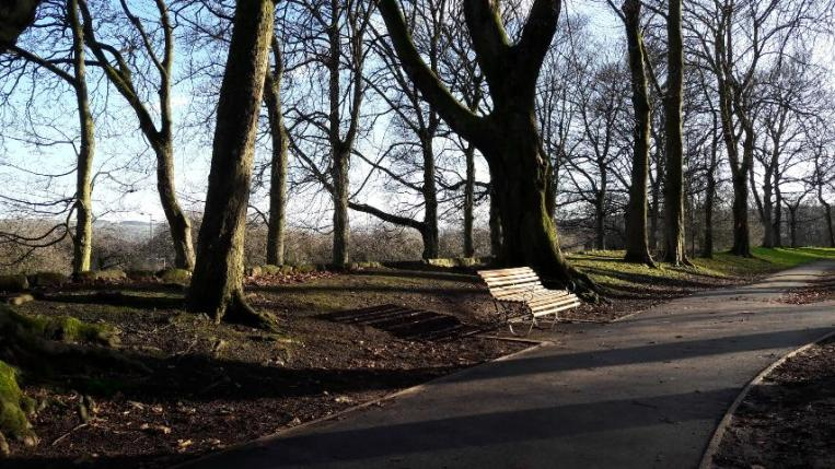 Empty bench, afternoon sun, January, Cliffe Castle Park