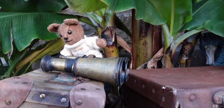 Treacle discovers a pair of antique binoculars bigger than himself